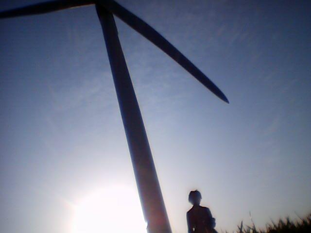 若洲の風車現地調査中